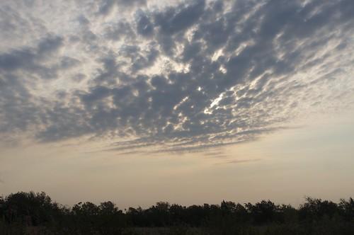09.01.2011 Sunrise