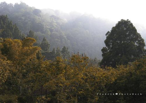 Kabut Kaliurang