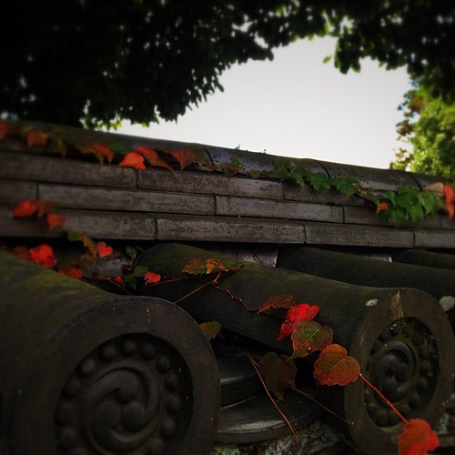 屋根の瓦も秋づいてきました。 #autumn #iphonography #instagram