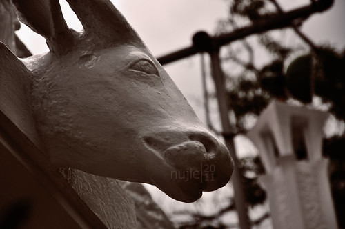 Emilio Aguinaldo Shrine Cow