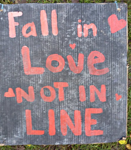 P1110354 Fall in Love ... not in line