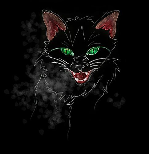 Halloween's Wild Cat