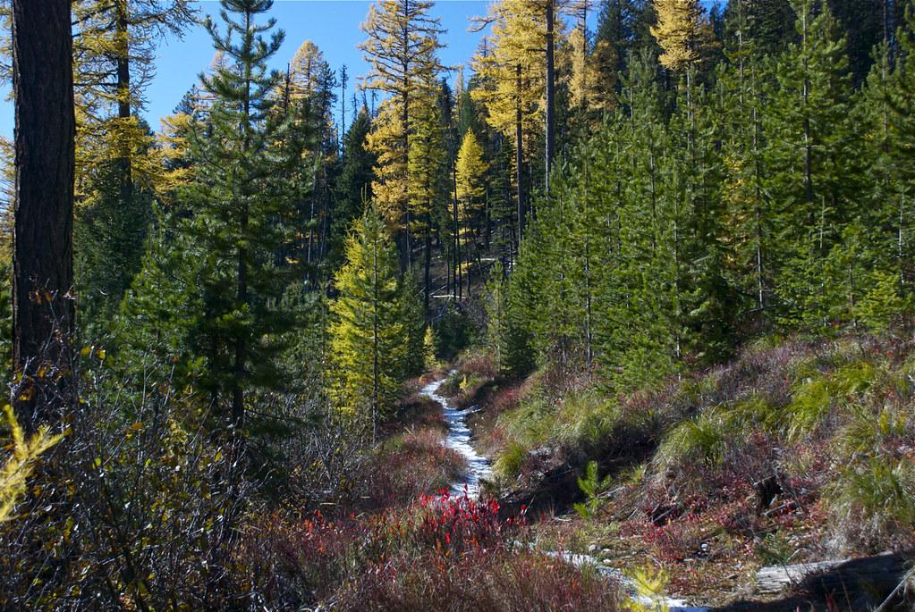 Trail 368