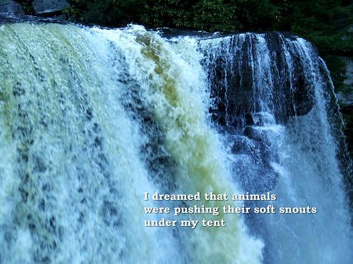 Blackwater Falls postcard