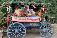 Santa's Reindeer Roundup