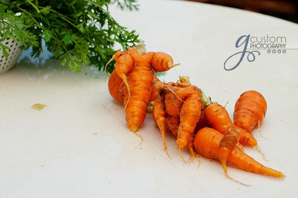 41 - spooky carrots