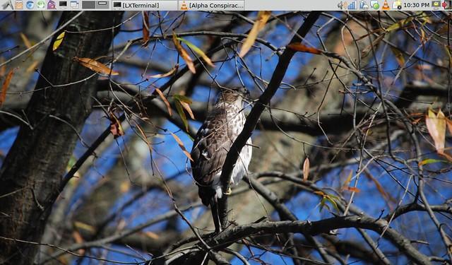Acer Aspire One Netbook - Debian Wheezy