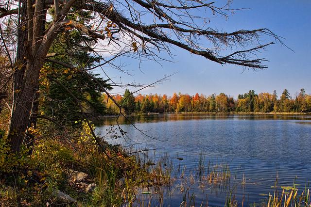 Especially For LP: The Lake at  Balaclava