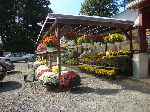 Stattel's Farm