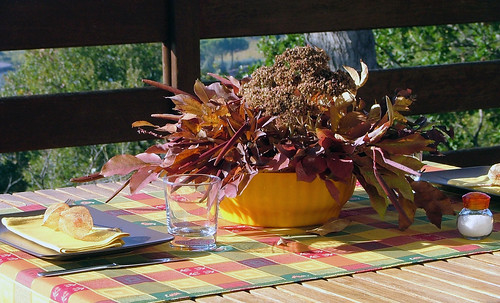 November Tablescape (outside)