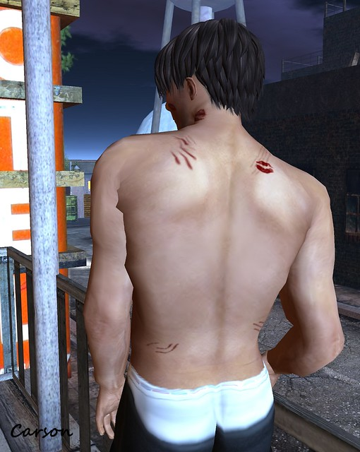 LaVie ~ The Lovers  the morning after Skin (back)