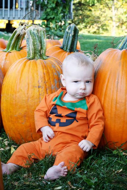 pumpkinpout