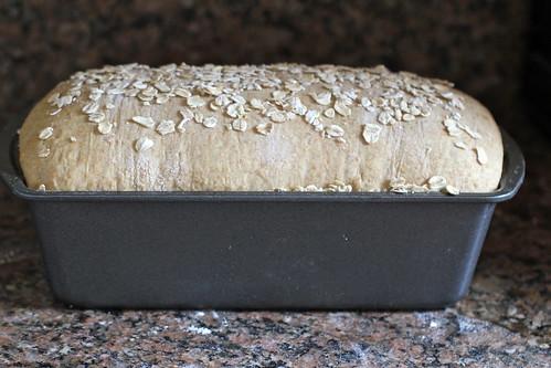 shaped loaf