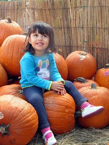 Pumpkin Patch by alexthoth
