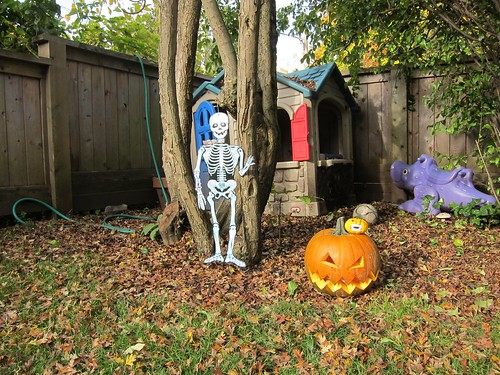 Outside Decorations Skeleton & Pumpkins