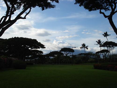Maui 012