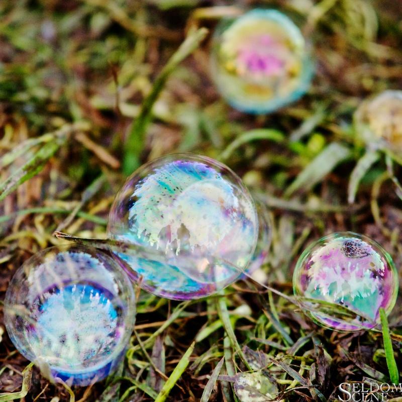 Bubbles in the grass