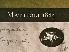 Virginia Woolf, Diari di viaggio. Mattioli 1885. [responsabilità grafica non indicata]; [imm. di cop. senza attribuzione]. Copertina (part.), 2