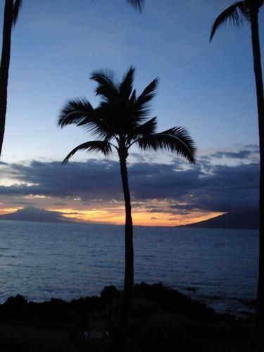 Maui 033