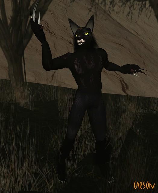 Ankh Morpork  - Werewolf Avatar