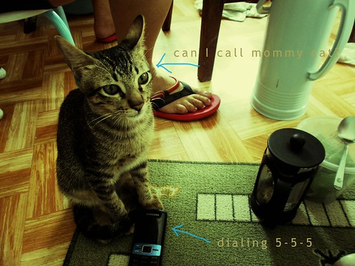 Dialing 555