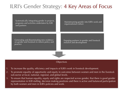 ILRI Gender Strategy: 4 Key Areas of Focus