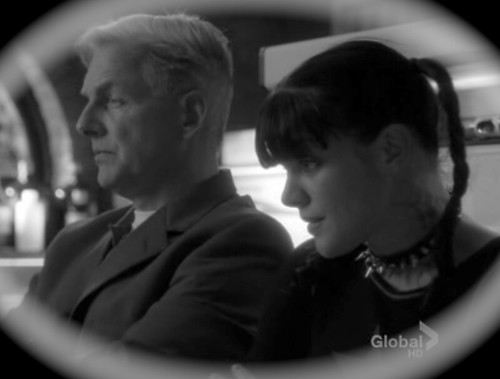 Gibbs and Abby