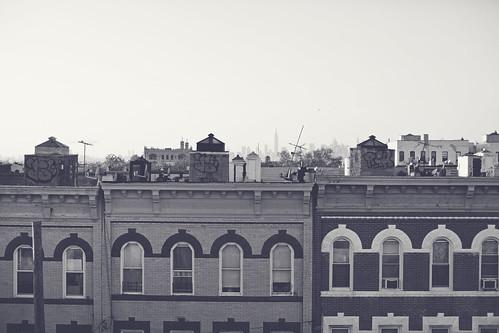 Brooklyn rooftop