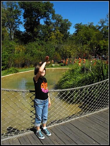 2Nashville zoo 7