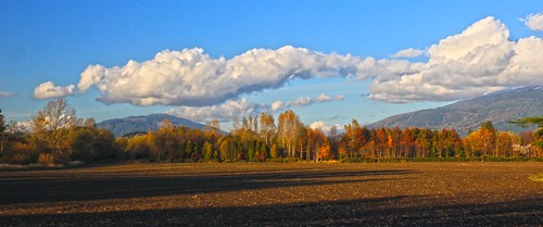 Late afternoon light, Fall 2011 by i8seattle