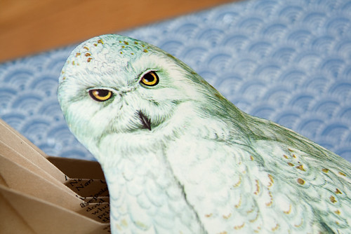 Altered Books- Snowy Owl-4