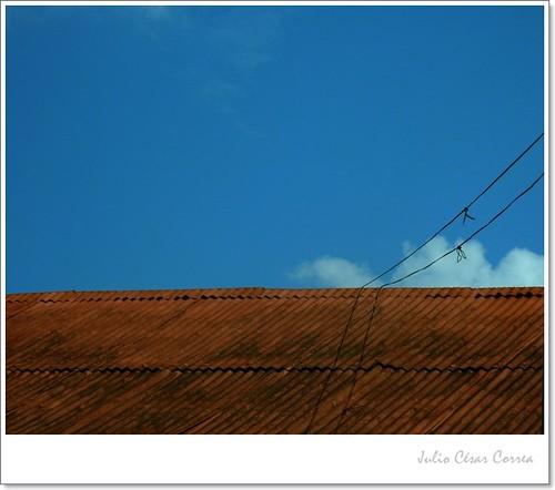 Sobre el tejado by Julio César Correa