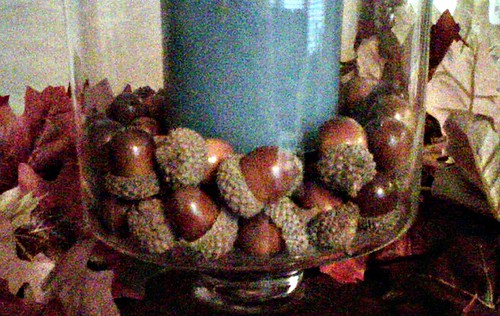 acorn, vase filler, hurricane, candle, fall, decor