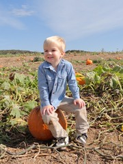 Ryan pumpkin patch