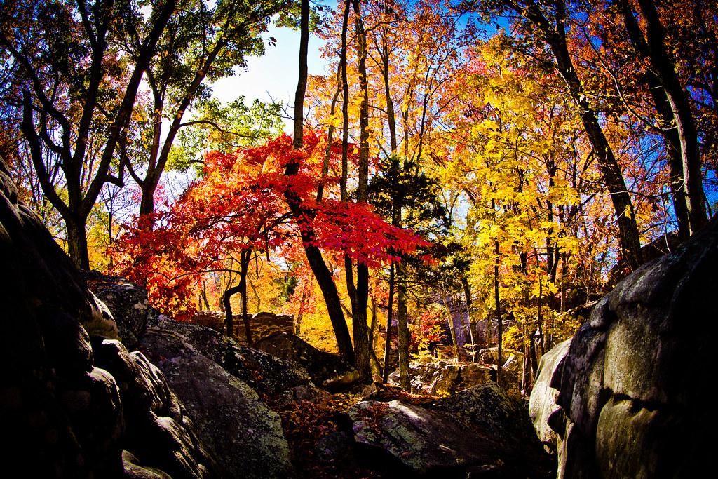 Fall Foliage at Stone Fort