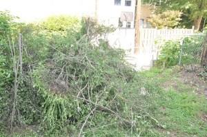 Pile o' hedges