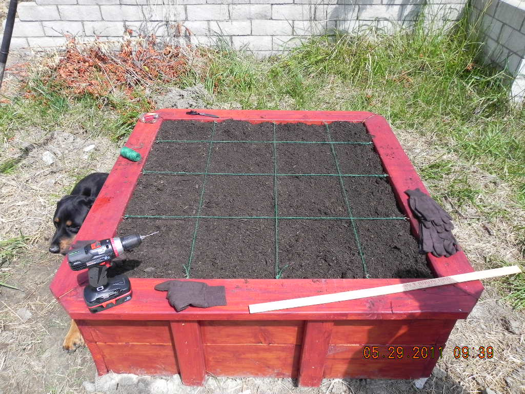 Raised Container Garden Box