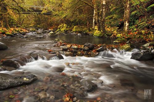 French Creek by Ian Sane