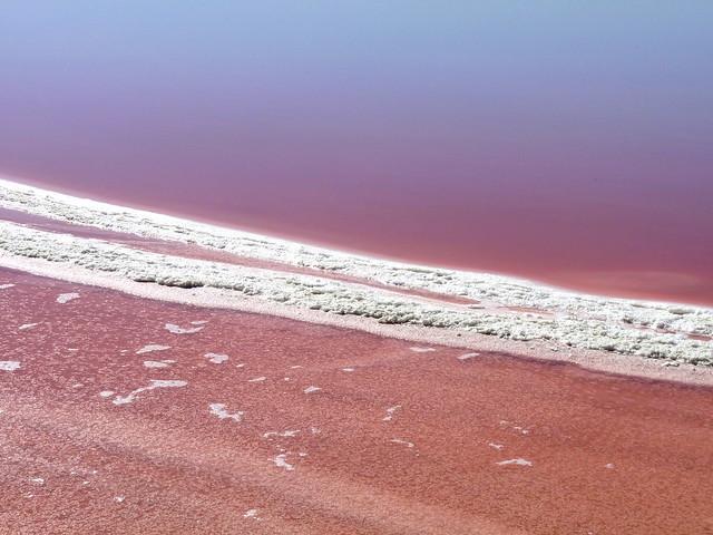 Les Salins de Giraud : sel rose et lac rose