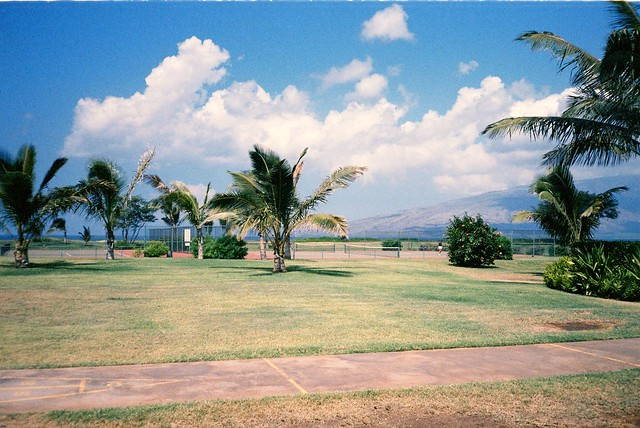 Maui Hill Hotel Resort [1985]