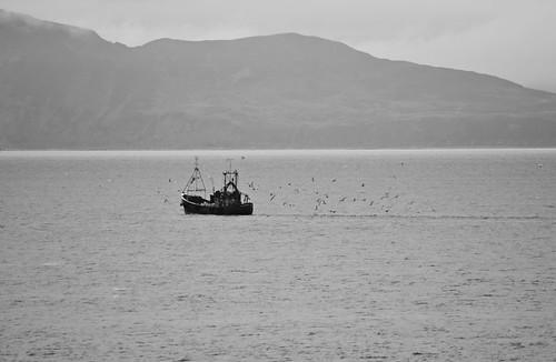 20111013_Arran Isle_5