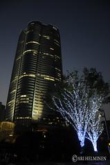Roppongi Hills Christmas lights 六本木ヒルズ