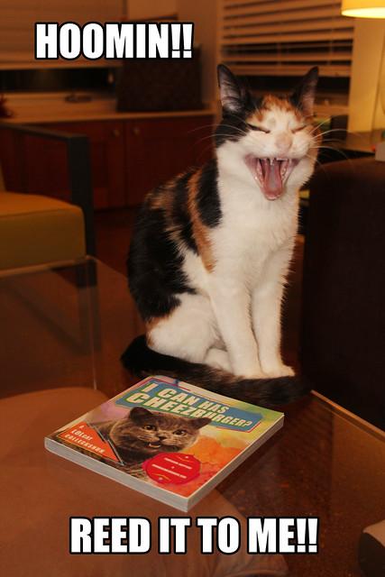 maeby's favorite book