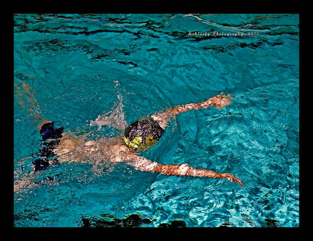 #324/365 Breast Stroke