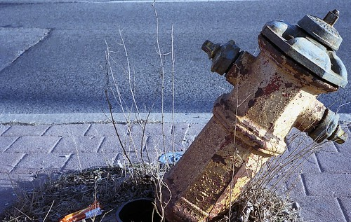 Broken Hydrant, North Toronto