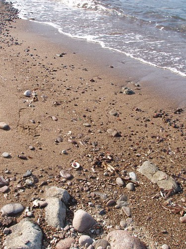 201110150088_Dodo-beach