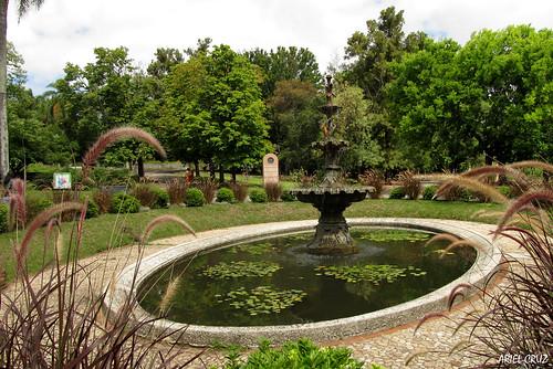 365-11   Jardín Botánico Profesor Atilio Lombardo - Botanical Garden Professor Atilio Lombardo (Montevideo)  