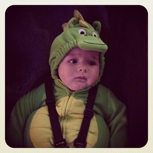 Our Sad Little Dragon