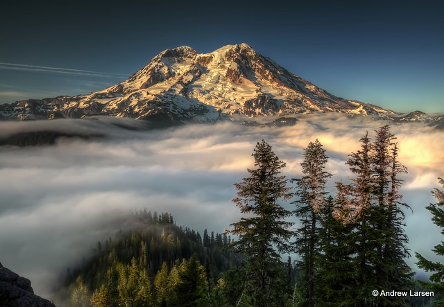 The Mountain From Gobblers Knob In Mt Rainier National