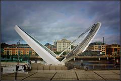 """""""Millennium Bridge"""" Gateshead."""
